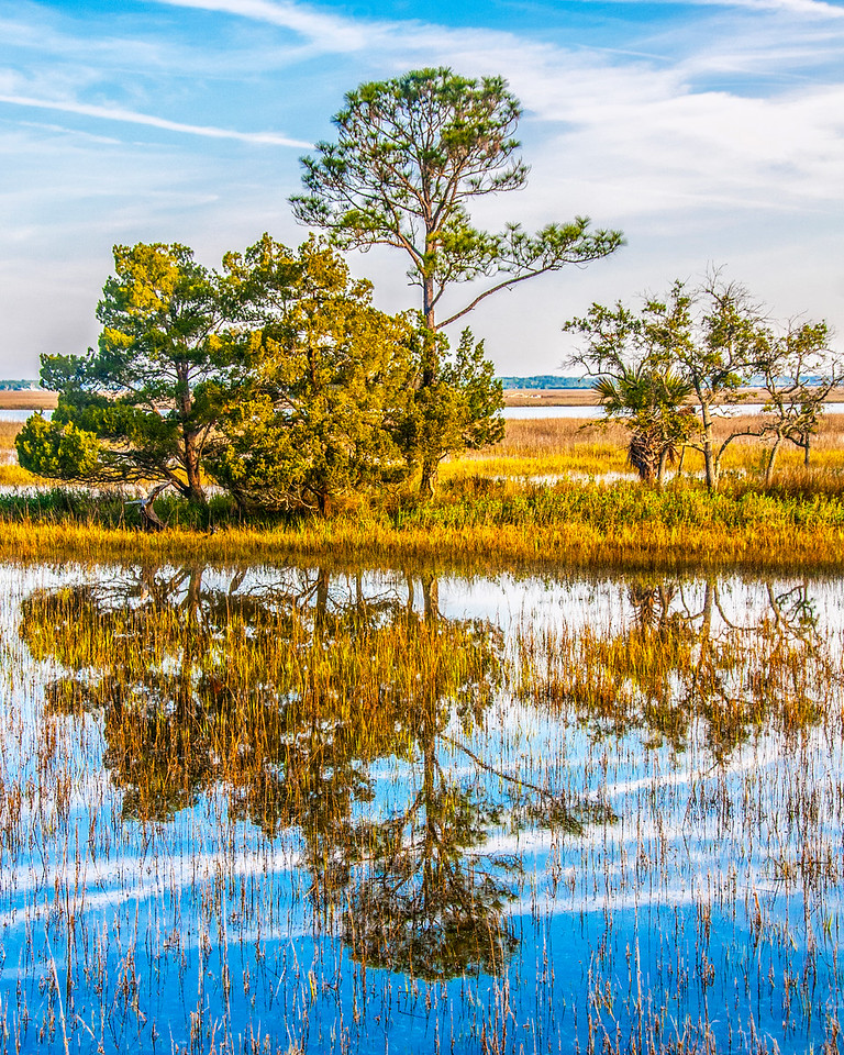 Hunting Island Reflection