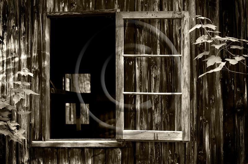 Bunkhouse 41