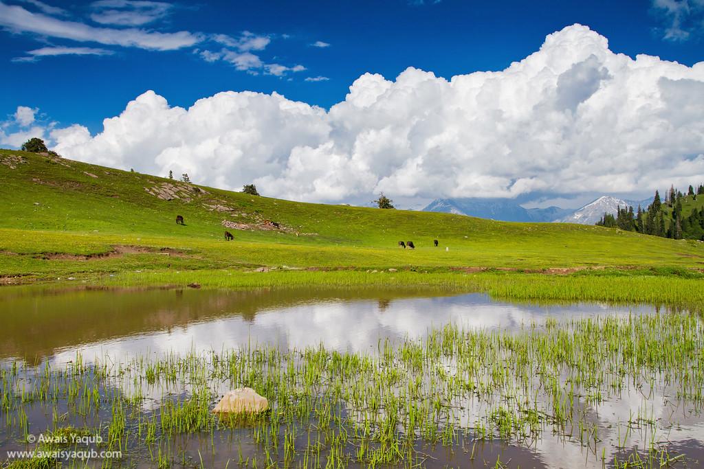 Payee Lake at 14000 feet