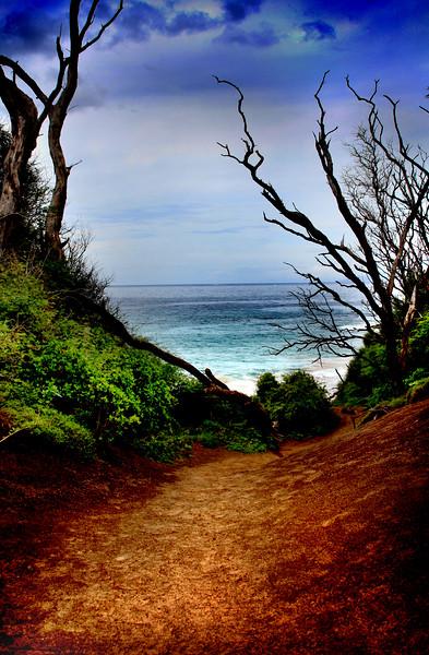 Lanai, Hawaii Series<br /> Image #6294<br /> 2009