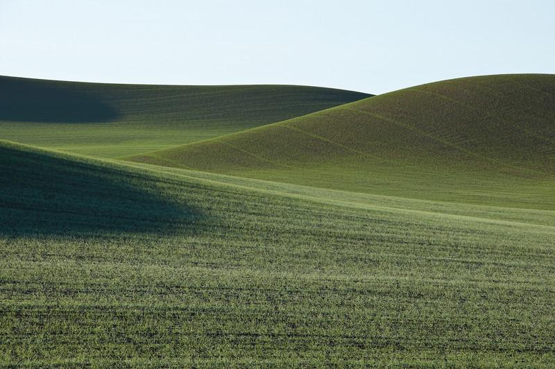 Palouse Green Hills