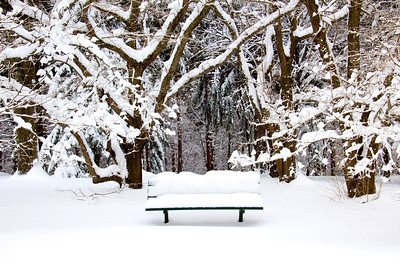 Durand Eastman Park - Winter 2013