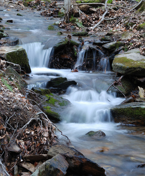 04/09/11 - Near Owen's Creek - Catoctin, Maryland