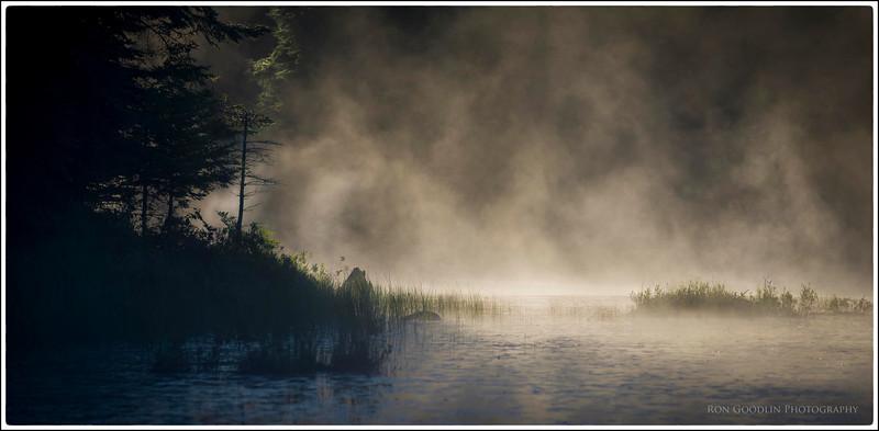 Algonquin Mist