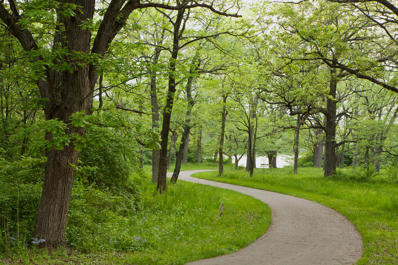 Bike trail in the spring, Illinois