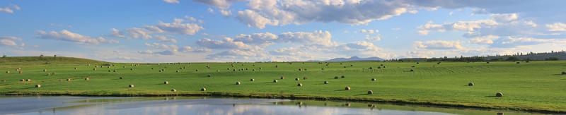 Panaomic View of field on Transcanada Highway 1