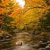 Fall Foliage, NS   Oct. 2011
