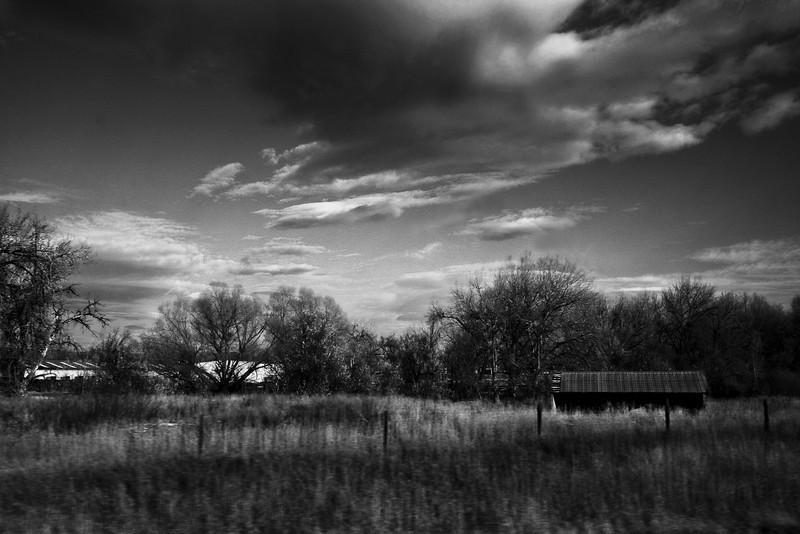 Abandoned shed.