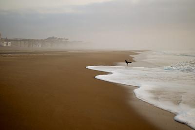 Morning Haze - 2013