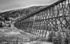 Mountain Trestle