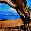 Hawaii Series<br /> Image #9969<br /> 2009<br /> Limited Edition Prints Available.