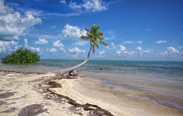 the Moorings Islamorada, Florida Keys