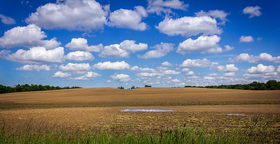 Farmland with Clouds