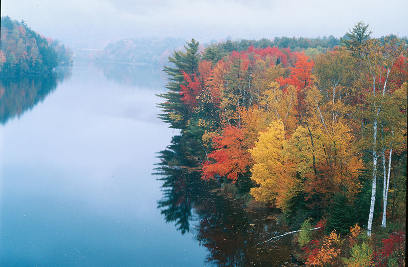 Fall color at the Connecticut river, Vermont