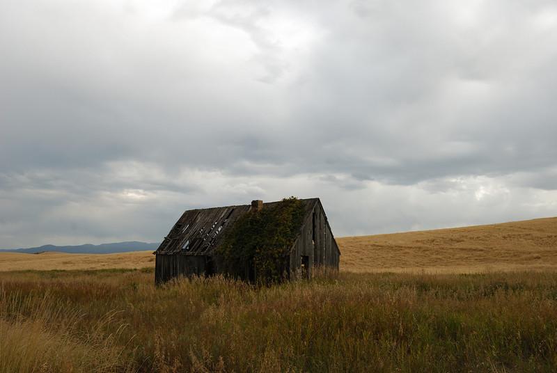 Dilapidated building in field near Ririe, Idaho