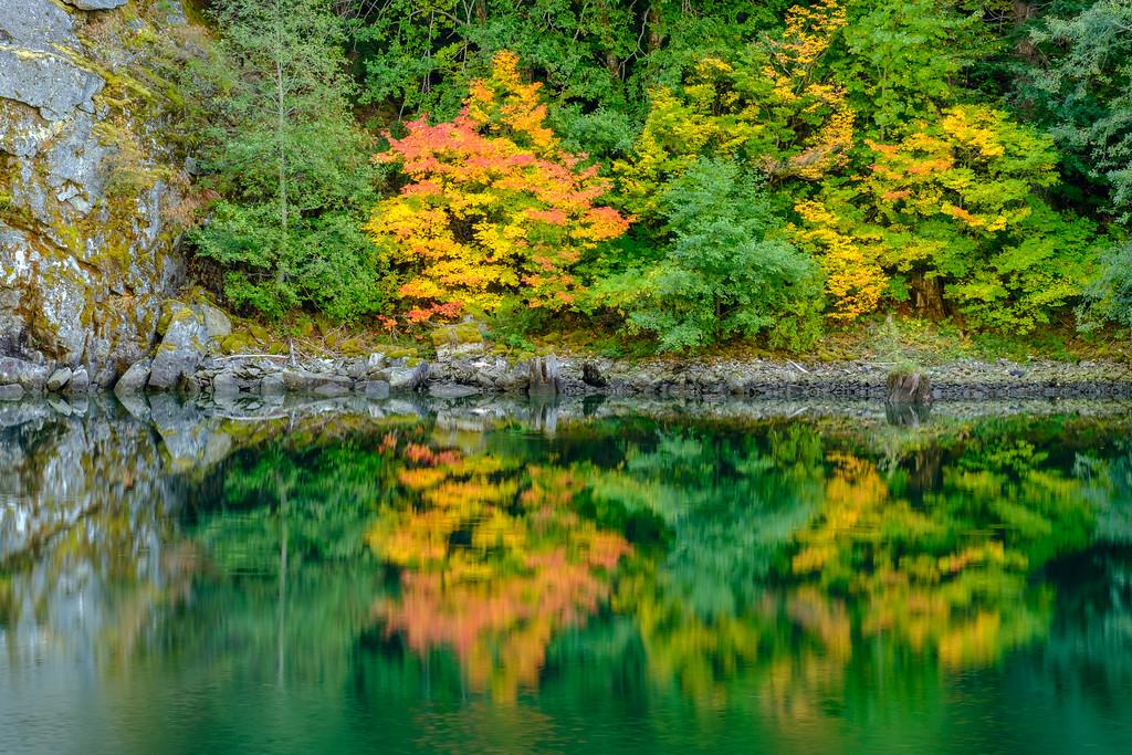 Fall Color along George Lake