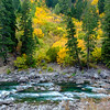 Wenatchee River in the Fall
