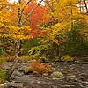Fall Foliage, NS  Oct.2011