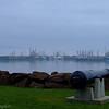 Digby Wharf in fog