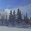 Snow scene, Deep Brook NS #2