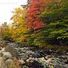 Fall Foliage, NS  Oct.2011.