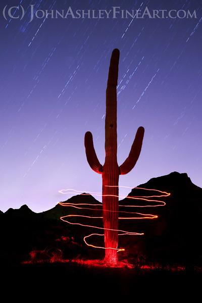 """Saguaro Spiral."""