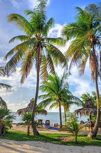 within the palms.