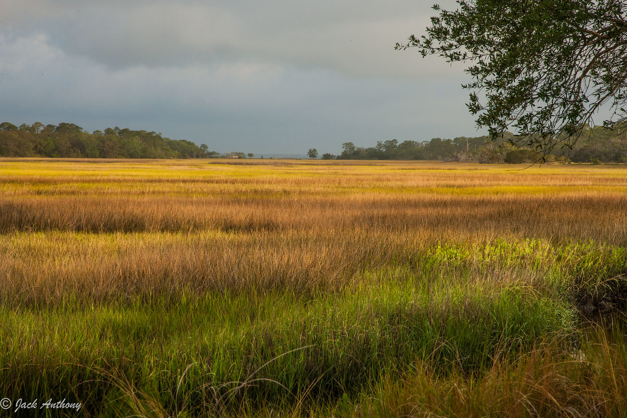 Marshes of Glynn, Glynn County, Ga.