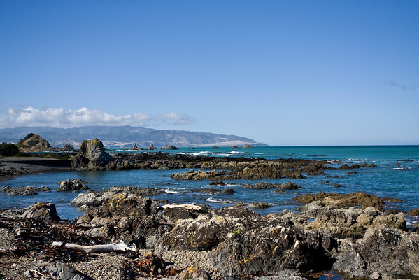 IMG#8392 Wellington, New Zealand