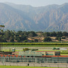 santa anita park - incredible view to start off a wedding reception!