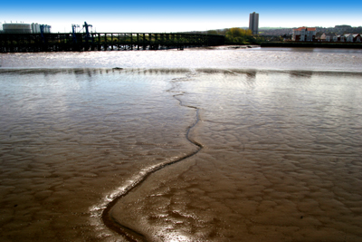 The Tyne at low tide