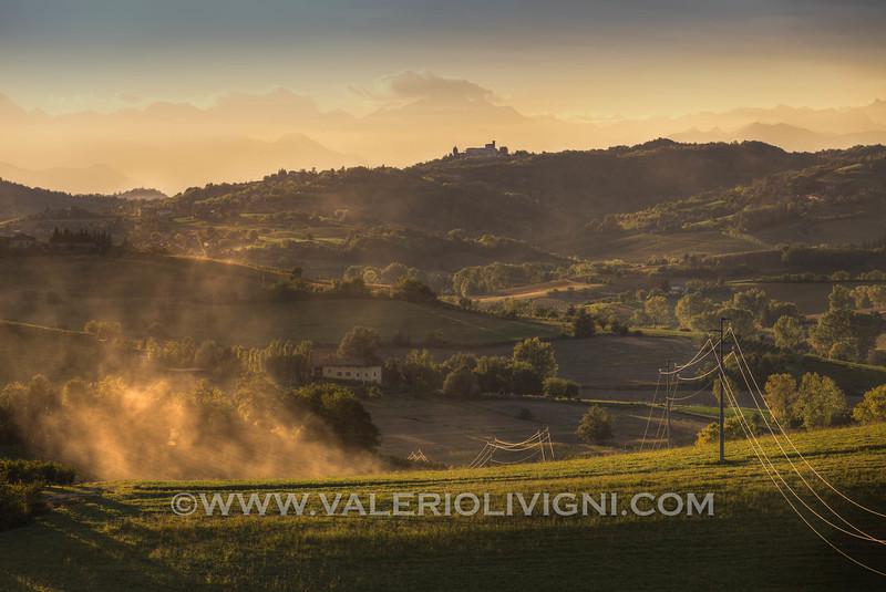 Monferrato - Vineyard landscape