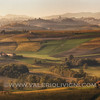 Monferrato - Fall vineyard landscape from panoramic viewpoint  Melvin Jones in Vignale Monferrato (Grazzano Badoglio in the background)