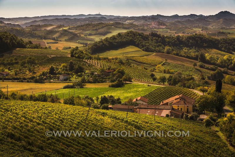 Monferrato - Vineyard landscape<br /> © UNESCO & Valerio Li Vigni - Published by UNESCO World Heritage