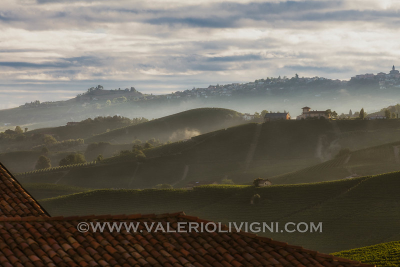 Langhe -  Vineyard landscape from Barolo<br /> © UNESCO & Valerio Li Vigni - Published by UNESCO World Heritage