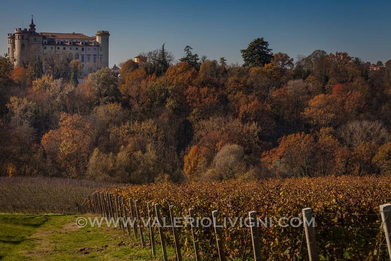 Langhe - Fall vineyard landscape at Costigliole d'Asti