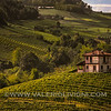 Langhe -  Vineyards of Barolo<br /> © UNESCO & Valerio Li Vigni - Published by UNESCO World Heritage