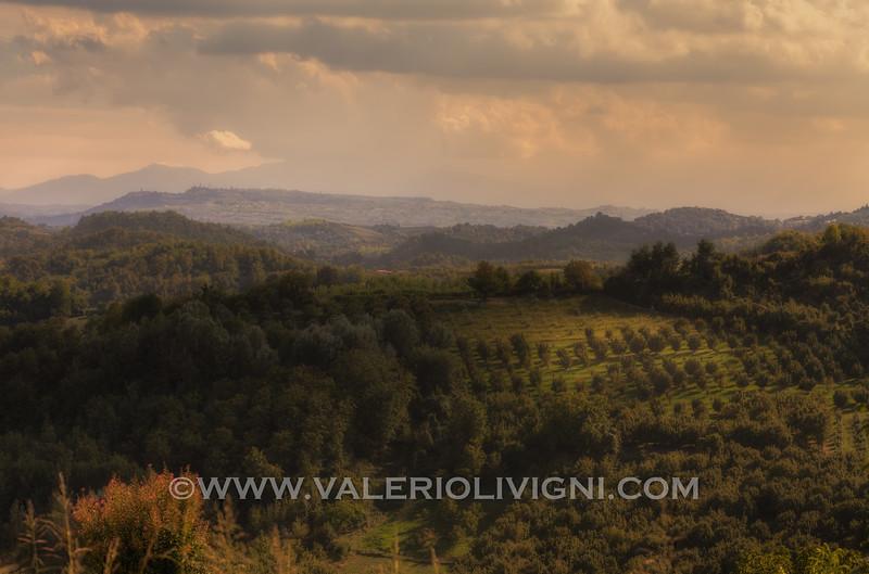 Roero -  Vineyard landscape<br /> © UNESCO & Valerio Li Vigni - Published by UNESCO World Heritage