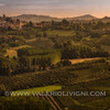 Langhe -  Vineyard landscape with Neive in the background<br /> © UNESCO & Valerio Li Vigni - Published by UNESCO World Heritage