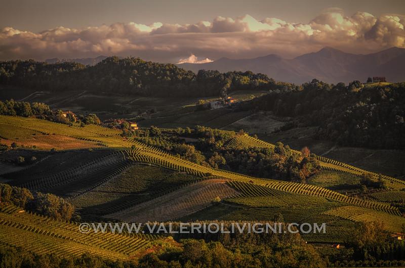 Langhe -  Vineyard landscape<br /> © UNESCO & Valerio Li Vigni - Published by UNESCO World Heritage