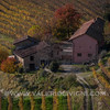 Langhe - Fall vineyard landscape