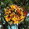 Floral Display in Las Vegas