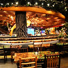 Rainforest Restaurant at MGM Grand in Las Vegas NV