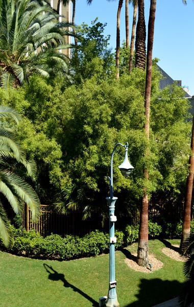 Walking around Las Vegas NV