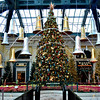 Christmas Tree at the Bellagio in Las Vegas NV