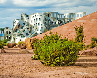 """The Art of Healing"" Cleveland Clinic, Lou Ruvo Center for Brain Health, Las Vegas, Nevada This photo was entered in the Capture Downtown photo contest on 8-15-2011."