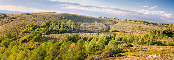 Hillside View Steens Mountain Southeastern Oregon  September 24, 2011