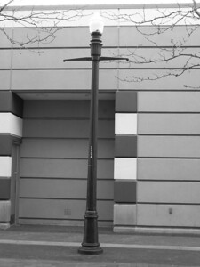 T, lamp post in Boise, Idaho
