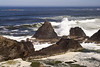 Seal_Rock_SP-26