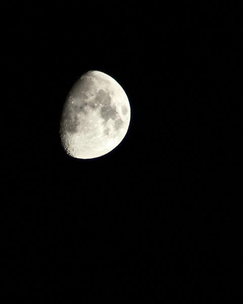 Moonshot (4 of 4)